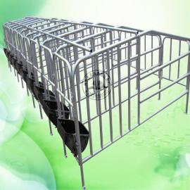 本厂专业设计厂家母猪定位栏保胎限位栏低价供应