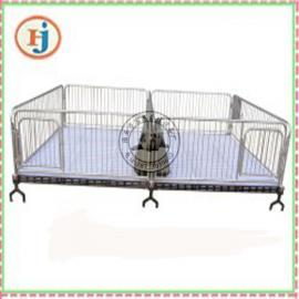 育肥小猪专用栏 双体小猪保育床厂家 保育床结构及规格