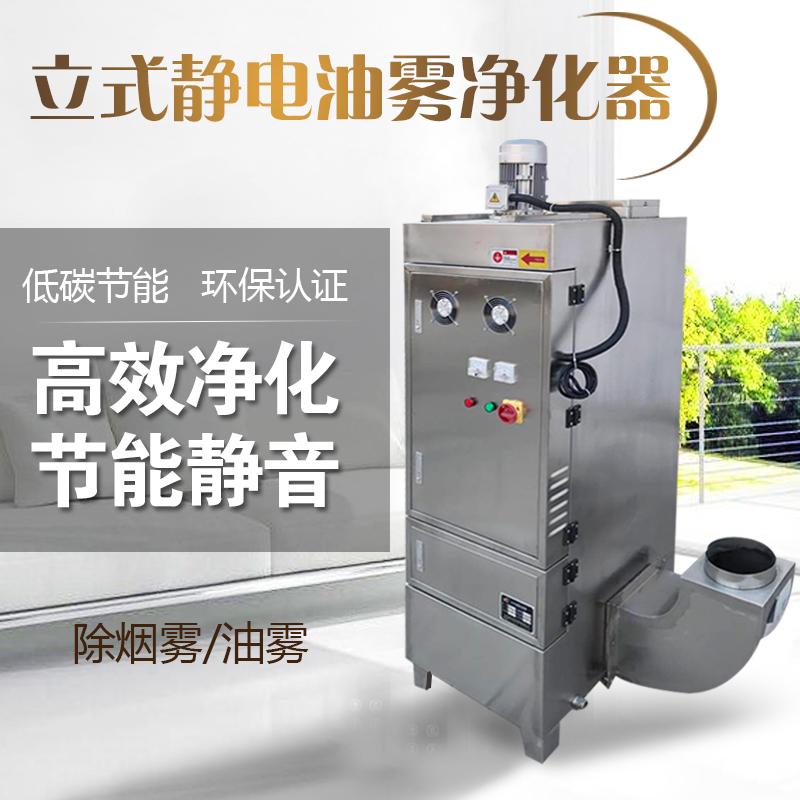 厂家生产 真空泵静电油烟分离器 立式油雾分离器机械式