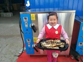 智能烤鱼箱生产厂家 东华仪器