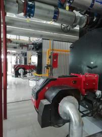 燃气超低氮蒸汽锅炉、燃气超低氮热水锅炉