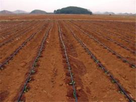 农业滴灌设施内镶圆柱式滴灌管优惠促销