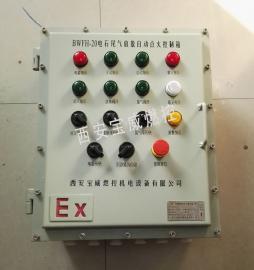 火炬自动点火控制系统 各种煤气火炬自动点火控制 熄火检测箱