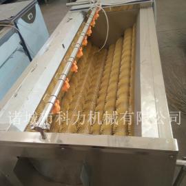 多功能去皮清洗机土豆萝卜去皮去泥清洗机厂家定制价格