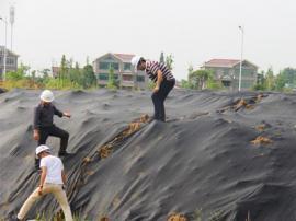 黑色盖土网A黑色盖土网订制A黑色盖土网厂家