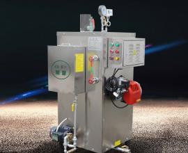 旭恩多功能多用途30kg燃气蒸汽锅炉