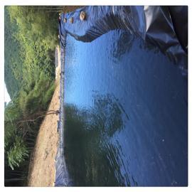 沼气池土工膜 黑膜沼气池 沼气池建设技术
