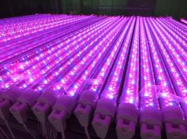 LED植物灯管