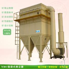 袋式脉冲粉尘收尘器 防爆型锅炉熔炉烟尘烟气除尘器设备定制