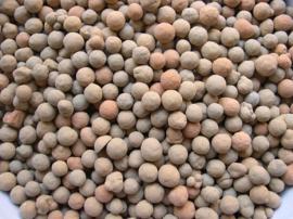装填陶粒滤料一个立方 处理三十吨污水 3-5生物陶粒滤料厂家直销