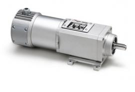 意大利Mini motor 单项电机 PAE-165M3 48.7 B3性能特点