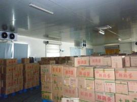 保鲜冷库优质厂家安装