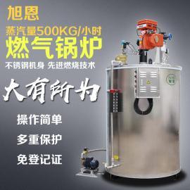蒸汽发生器 500公斤蒸汽发生器锅炉