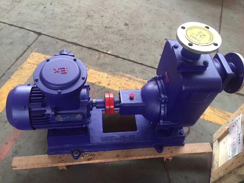 100ZW100-15自吸无堵塞排污泵
