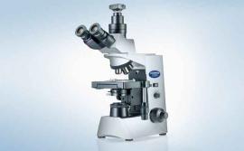 奥林巴斯Olympus显微镜CX31的价位
