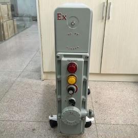 BDR51-2000w/11防爆电热油汀 2000w防爆电暖器油汀