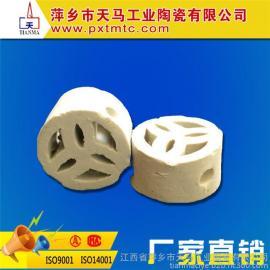 天马陶瓷专业生产陶瓷化工填料 陶瓷扁环