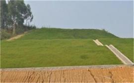 生态毯[环保草毯]椰丝抗冲