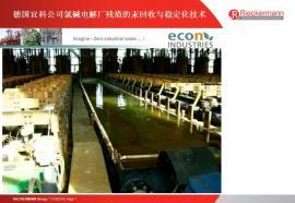 德国宜科公司氯碱电解厂残渣的汞回收与稳定化技术