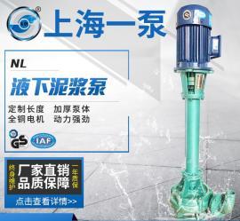 NL50-8 液下泥�{泵