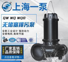 100JYWQ100-22-15 无堵塞排污泵
