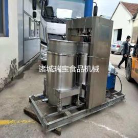 瑞宝YZ-100型果蔬压榨机 全自动液压沥水机