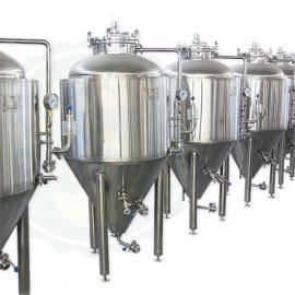300L啤酒设备