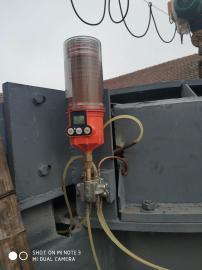 pulsarlube M500滚筒传输带轴承座注脂机