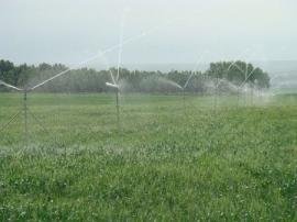 自动灌溉施肥设备性能