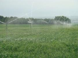 自动灌溉施肥设备案例