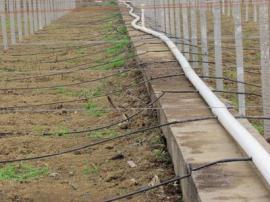 自动灌溉设备经销商
