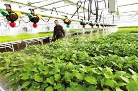水肥一体化系统设备经销商