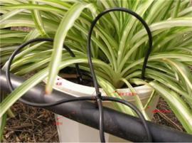 微灌系统滴箭系统节水增产