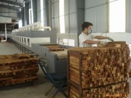 木材隧道式微波干燥杀菌设备