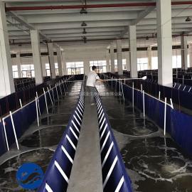 流水养殖水槽 农村水产优势项目 工厂化循环水养殖流水养鱼