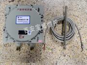 远程自动点火装置 燃烧器自动点火装置BWFD-20 批量现货