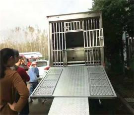 2层多功能生猪运输专用车图片