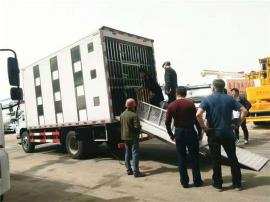 5.2米运生猪车配置