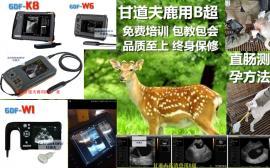 鹿用B超测孕使用方法梅花鹿快速测孕仪B超机