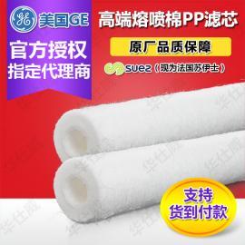 原装 美国GE通用贝迪滤芯PX10-20 PP棉滤芯 保安滤芯