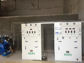 气体充装用二氧化碳净化装置首选瑞泽净化