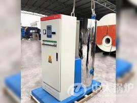 立式1吨电蒸汽锅炉 卧式1吨电蒸汽锅炉
