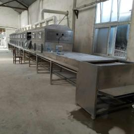 隧道烘干机硫酸铜微波干燥设备