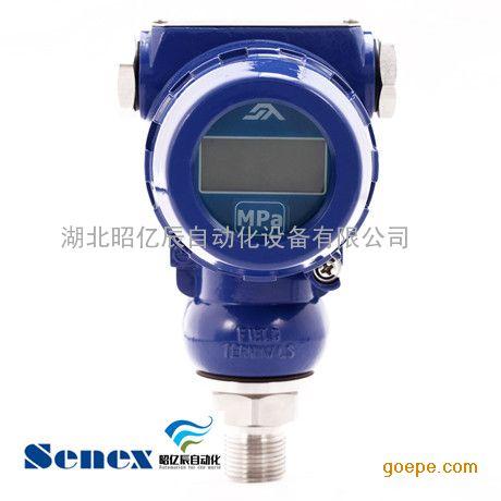 压力变送器 型号 DG1300- GY-A-2-10/CJ工业型 低价处理 森纳士