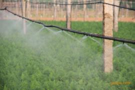 水肥一体化设备专卖