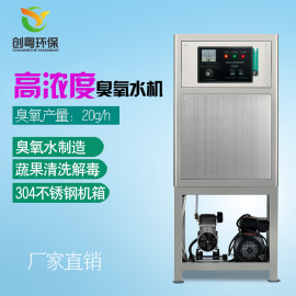 创粤CYW-20g高浓度臭氧水机 果蔬清洗臭氧发生器