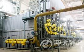 橡胶厂,化肥厂用锅炉 化工行业蒸汽锅炉 大型蒸汽锅炉