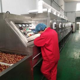 大枣隧道式微波干燥杀菌设备 红枣烘干杀菌