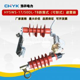 YH(HY)5WS-17/50L高压氧化锌避雷器10kV可卸式配电型避雷器