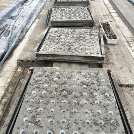 生物陶粒滤料,整体浇筑滤板,混凝土滤板